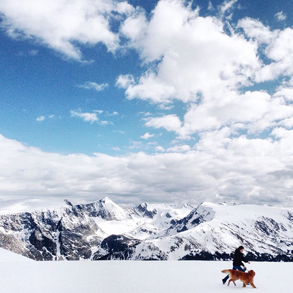 travelling-dog-aspen-hunter-lawrence-15