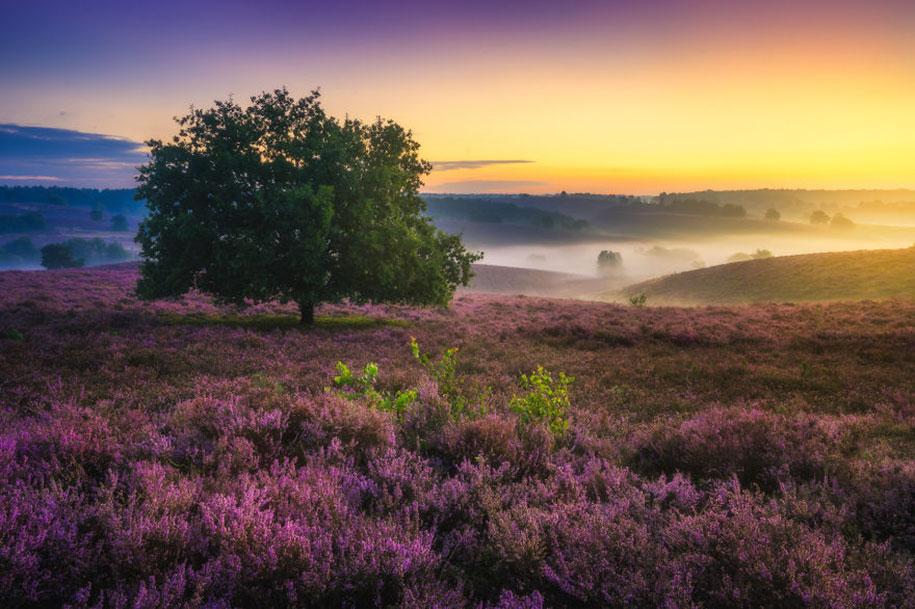 -amazing-netherland-photgraphy-albert-dros-6