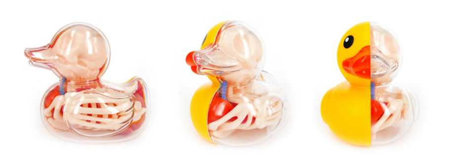 anatomical-balloon-animals-jason-freeny-1