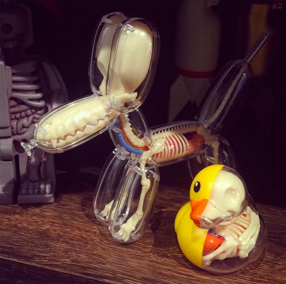 anatomical-balloon-animals-jason-freeny-3