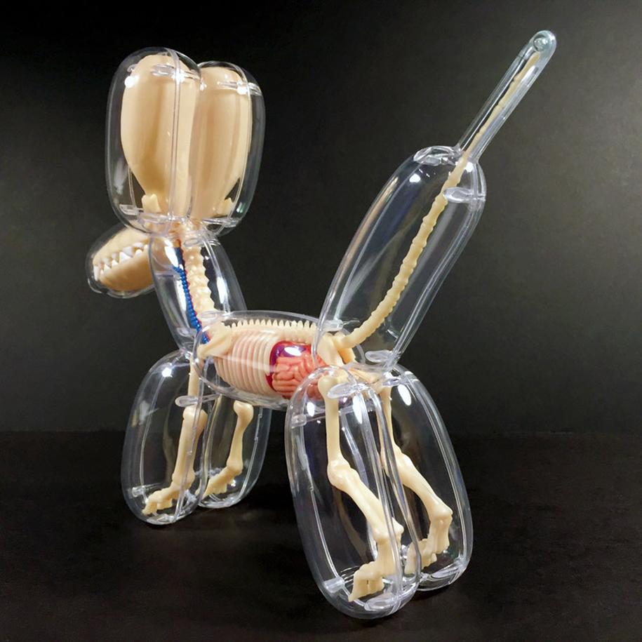 Anatomically Correct Animal Balloons By Jason Freeny