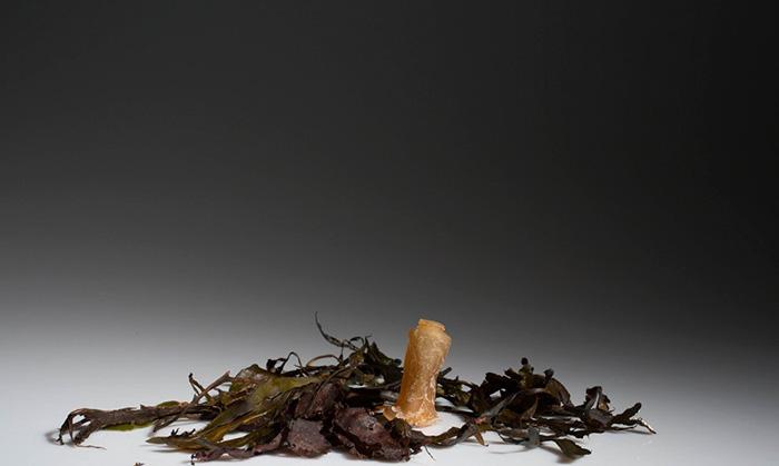 biodegradable-algae-plastic-replacement--ari-jonsson-1