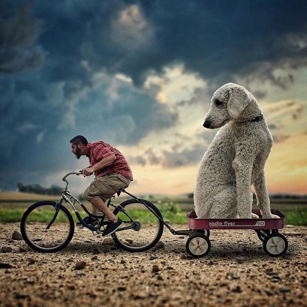 dog-giant-roams-streets-photoshop-juji-christopher-cline-20