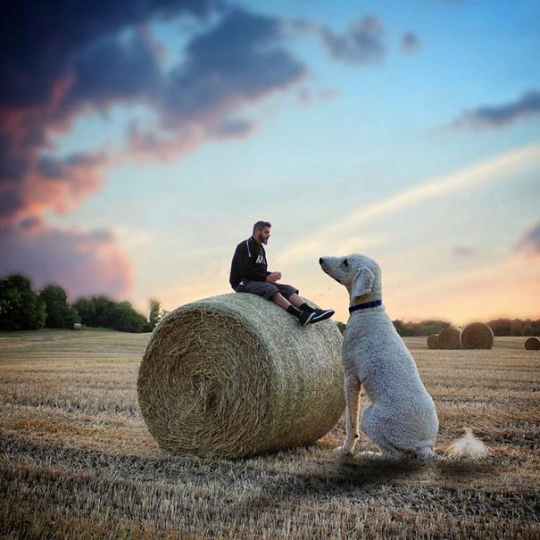 dog-giant-roams-streets-photoshop-juji-christopher-cline-25