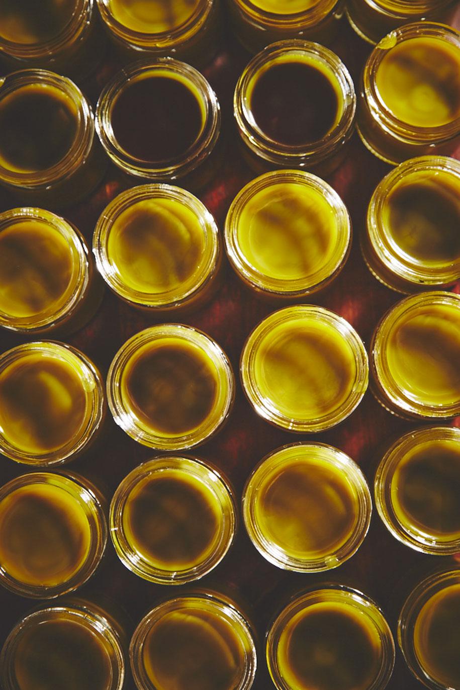 marijuana-horticulture-sisters-of-the-valley-shaughn-crawford-john-dubois-17