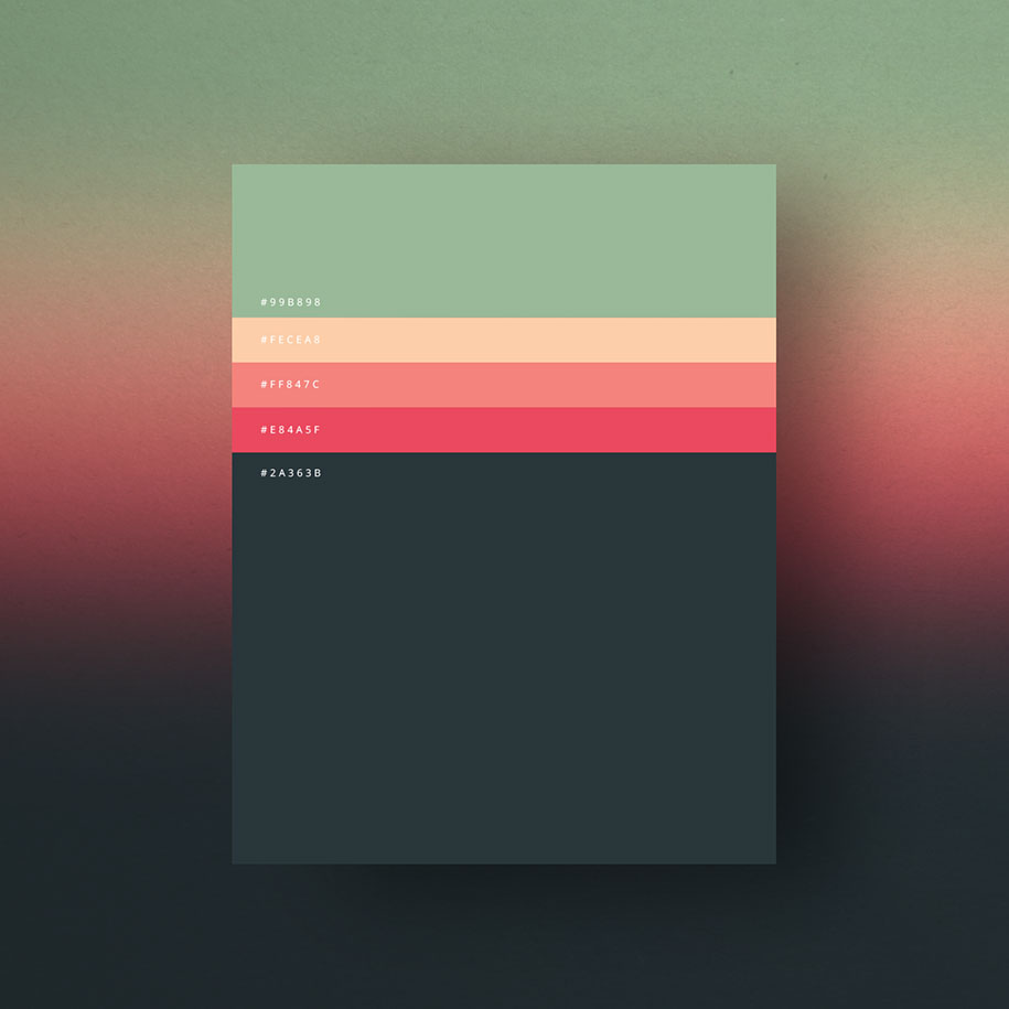 most-popular-color-palettes-of-2015-dumma-branding-6