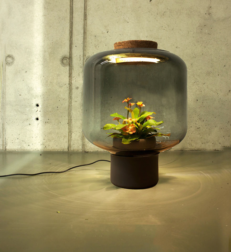 These Eco Lamps Also Grow Plants In Windowless Spaces