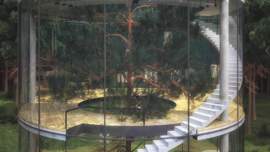 tree-in-glass-house-aibek-almassov-masow-architects-1