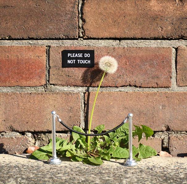 funny-vandalism-creative-street-art-25
