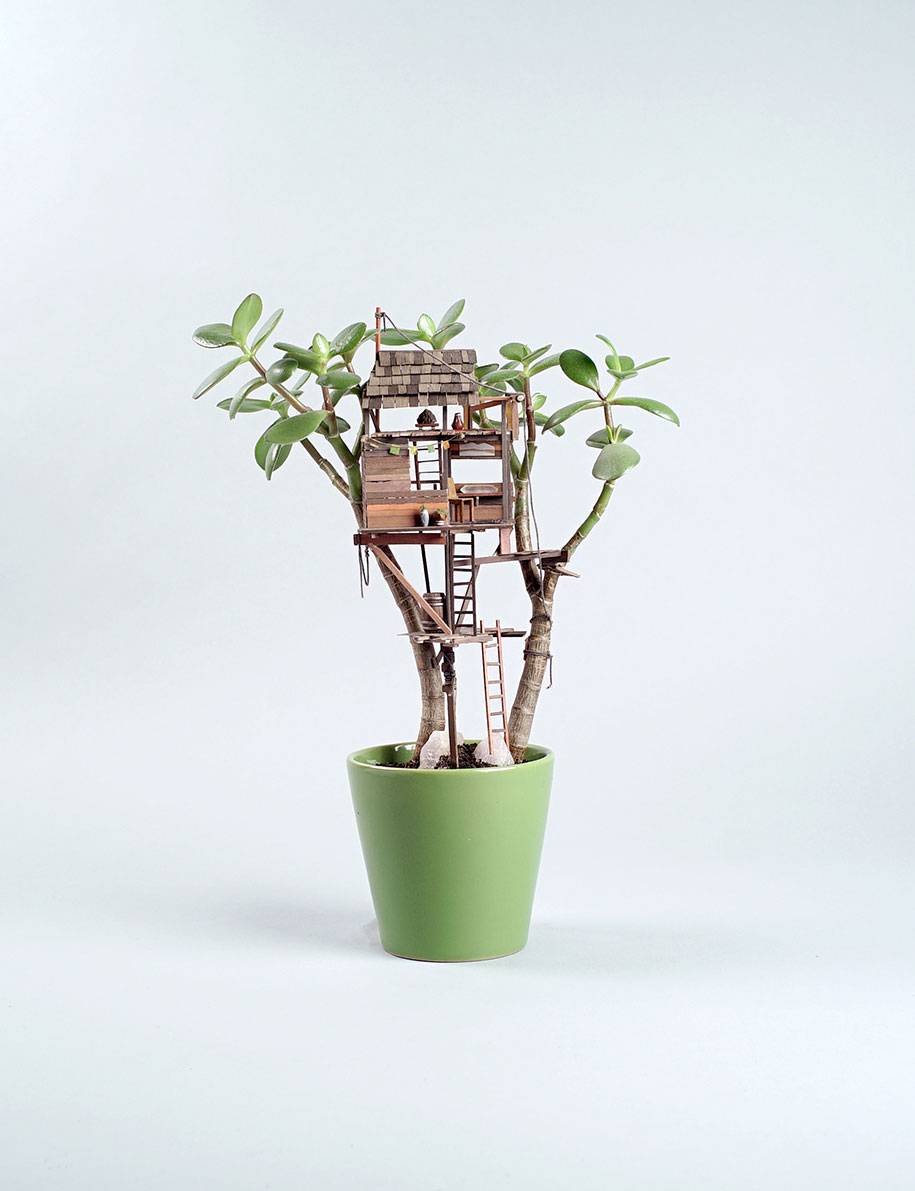 miniature-treehouse-houseplants-jedediah-corwyn-voltz-24