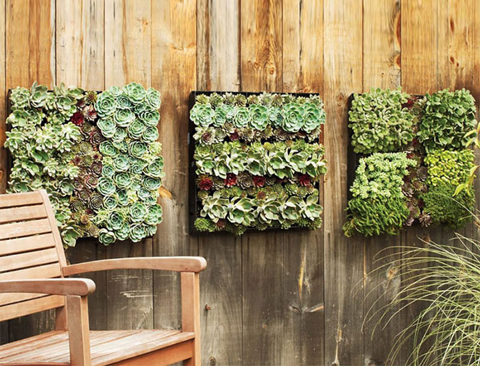 Creative Diy Garden Fence Ideas 10