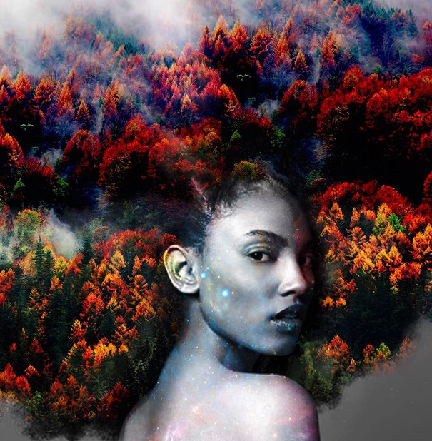 artist turns afro hairstyles into flowery galaxies to. Black Bedroom Furniture Sets. Home Design Ideas