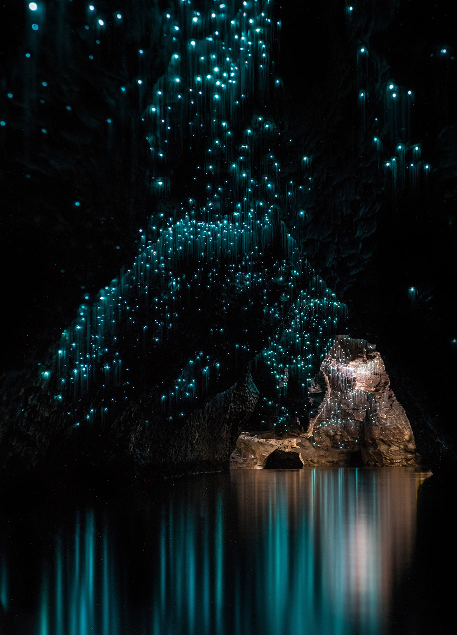 glowworms make natural light installations in new zealand u0026 39 s caves