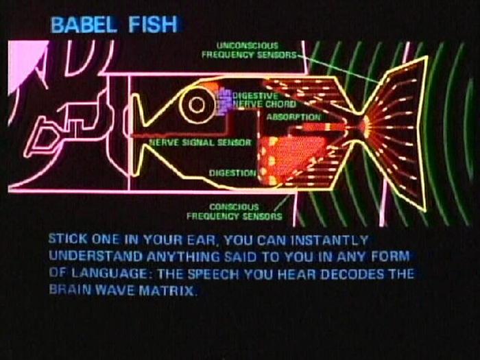 mini-real-time-translator-earpiece-waverly-labs-1