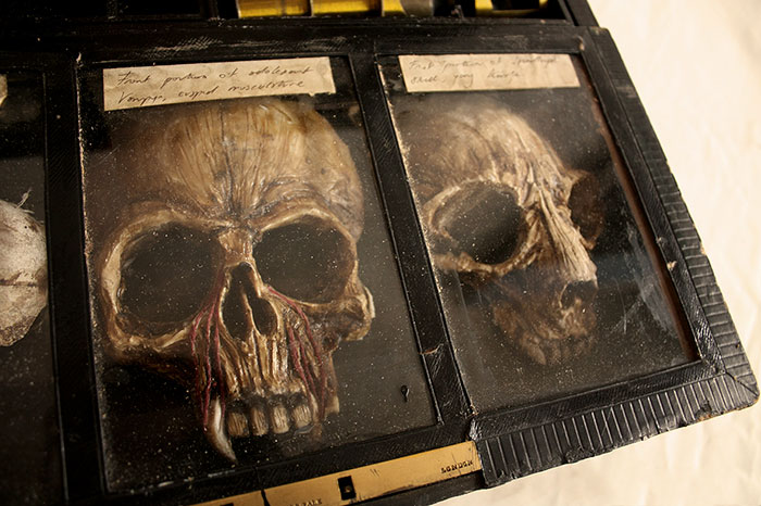 mysterious-skulls-skeletons-thomas-theodore-merrylin-home-london-11