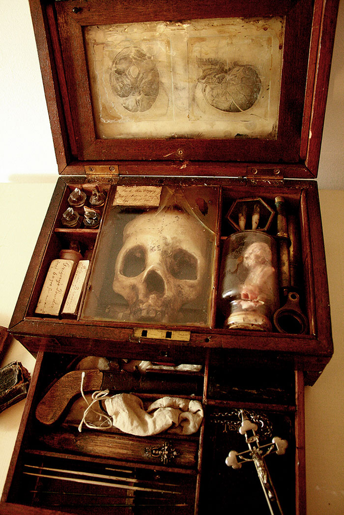 mysterious-skulls-skeletons-thomas-theodore-merrylin-home-london-12
