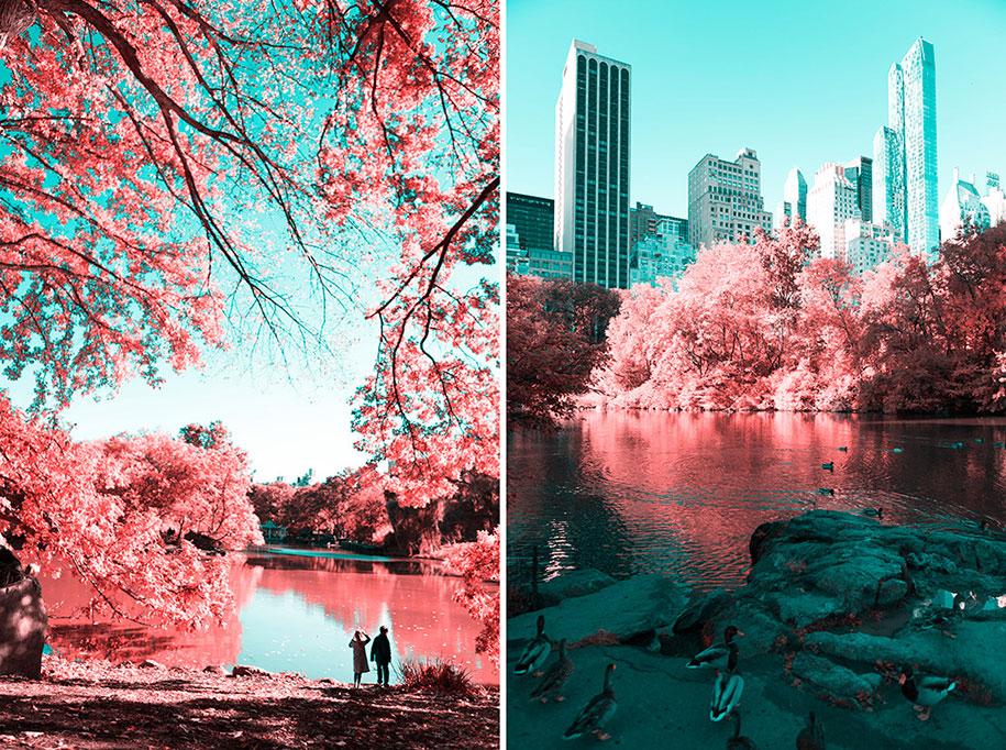 pink-colored-new-york-central-park-paolo-pettigiani-12