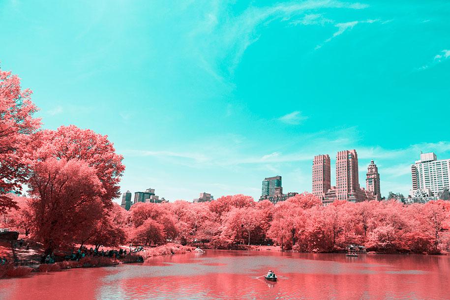 pink-colored-new-york-central-park-paolo-pettigiani-4