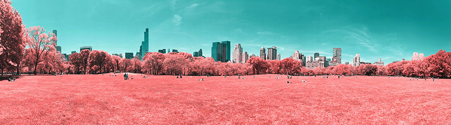 pink-colored-new-york-central-park-paolo-pettigiani-6