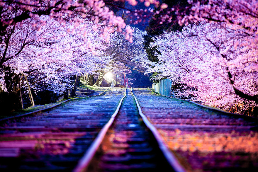 beautiful-places-tourist-attractions-japan-17
