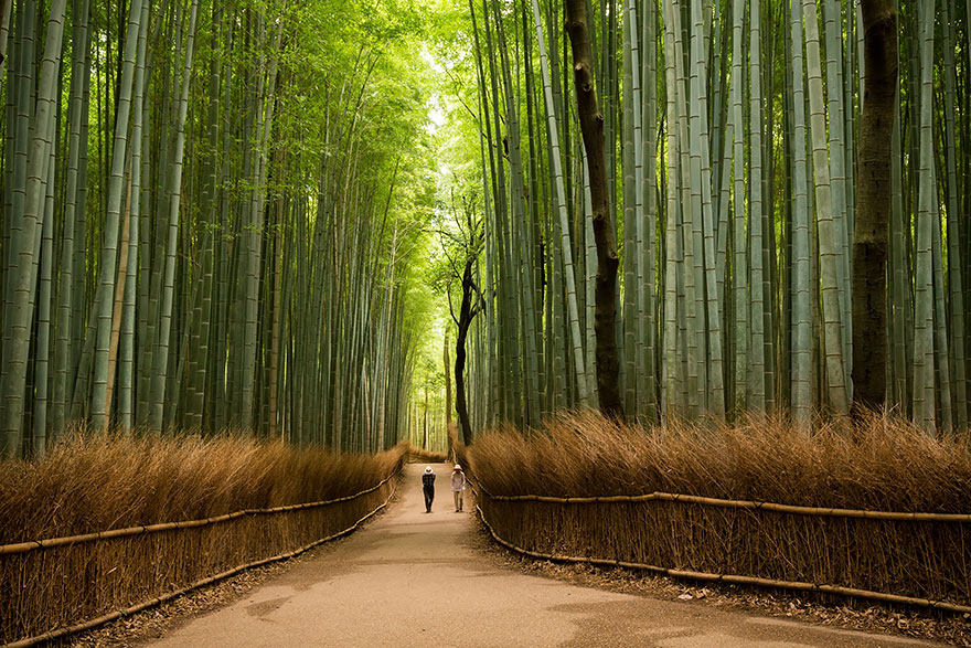 beautiful-places-tourist-attractions-japan-7