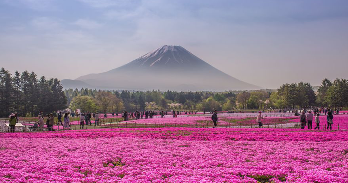 15 Places That Will Make Japan Your Dream Travel Destination