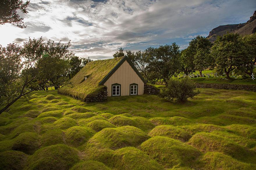 grass-roofs-green-houses-scandinavia-7