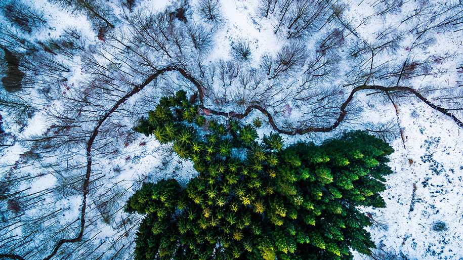 drone-photography-contest-2016-dronestagram-2