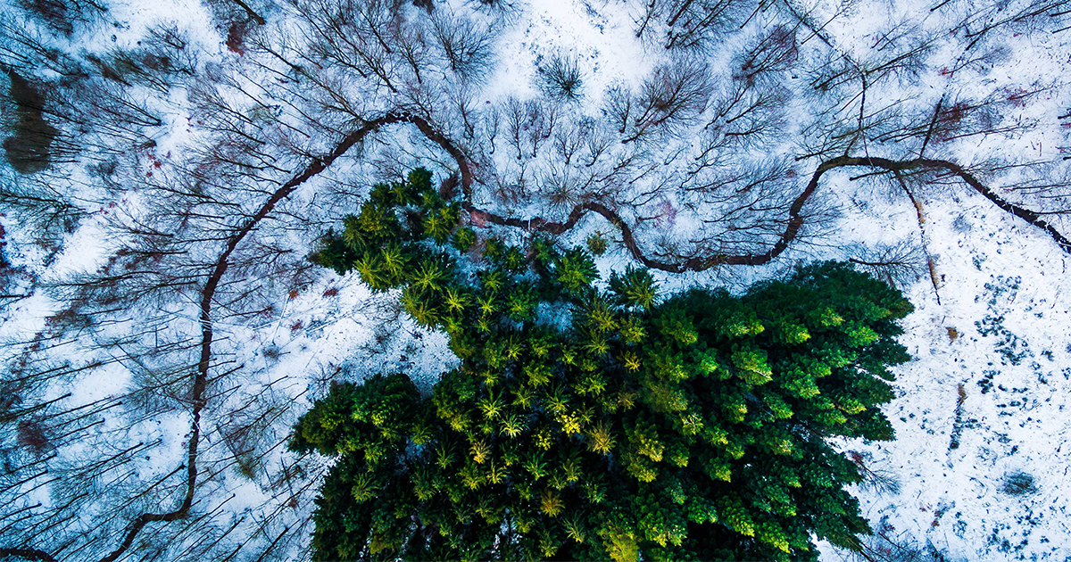9 Best Drone Photos Of 2016