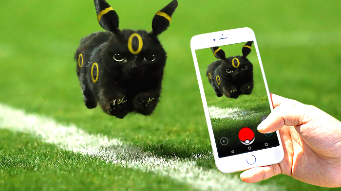 flying-rugby-cat-photoshop-battle-15
