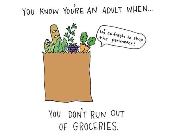 funny-illustrations-prove-you-are-adult-cristina-vanko-15