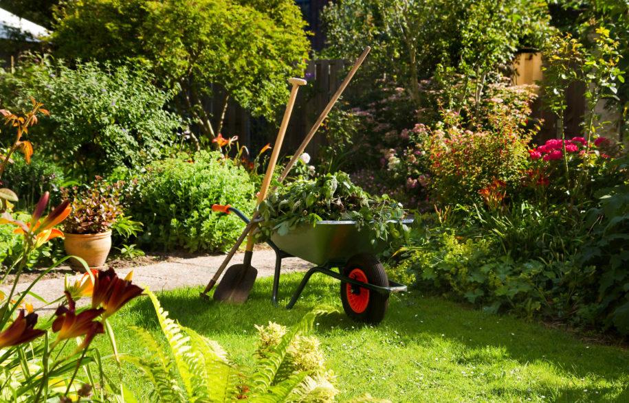 Genial Garden Maintenance