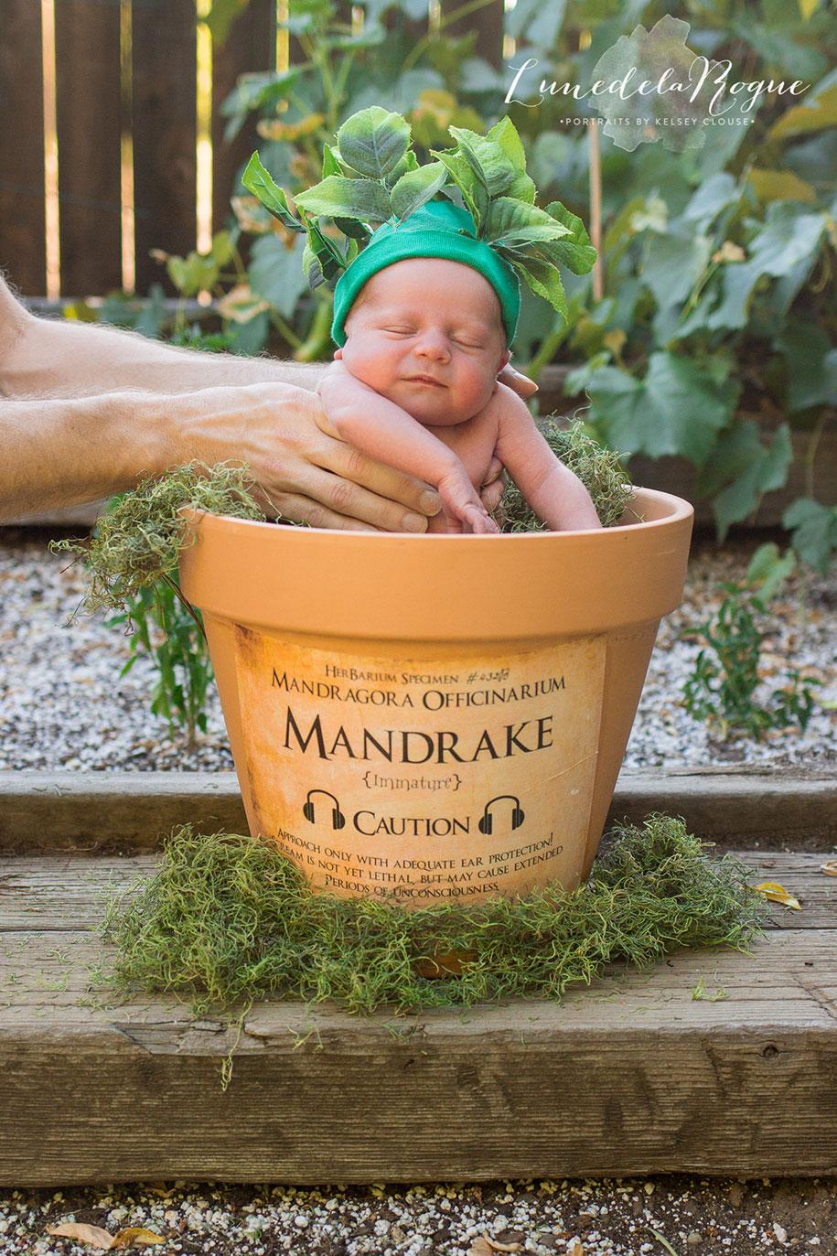 harry-potter-themed-newborn-photoshoot-kelsey-clouse-1