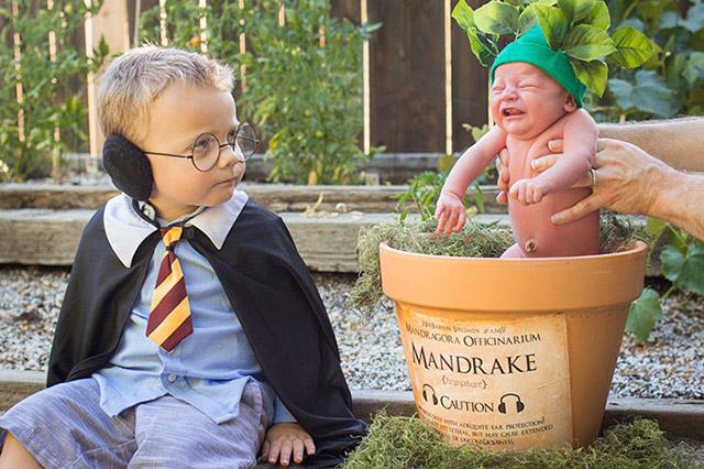 harry potter themed - photo #9