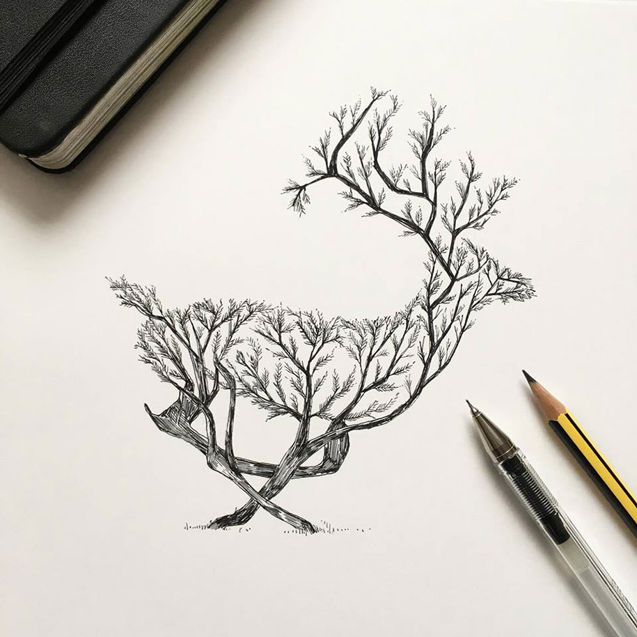 pen-ink-animal-trees-illustrations-alfred-basha-10