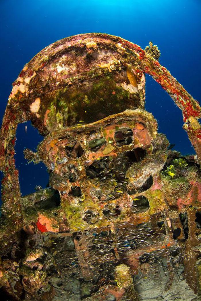 underwater-plane-graveyard-wwii-brandi-mueller-20