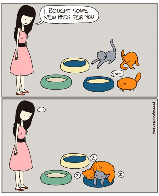 funny-comics-cat-vs-human-yasmine-surovec-8