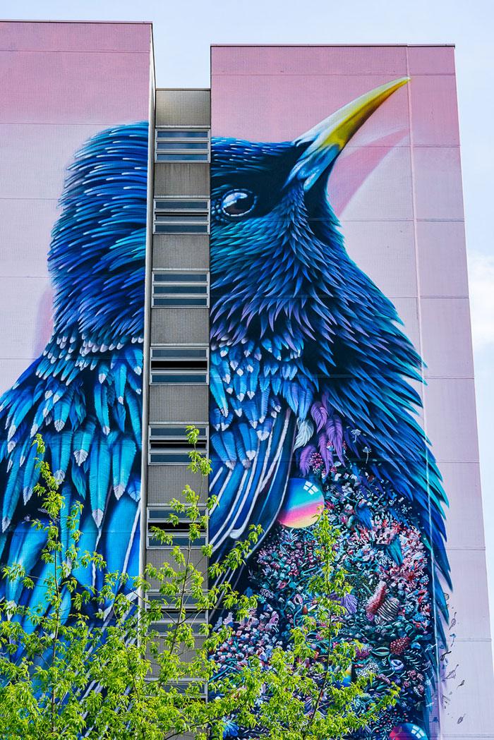 giant-starling-mural-berlin-collin-van-der-sluijs-super-a-3