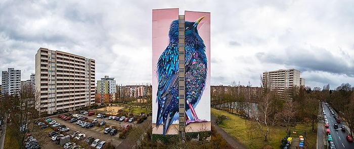 giant-starling-mural-berlin-collin-van-der-sluijs-super-a-7