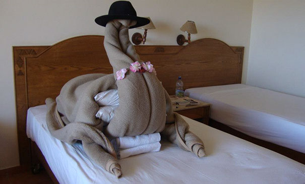 Trolling Tourists Made Weirdest Requests In Hotels And Got ... Funny Hotel Requests