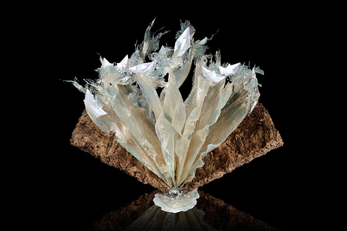 exploding-books-resin-glass-frozen-liquid-sculpture-liquidity-annalu-boerettos-3