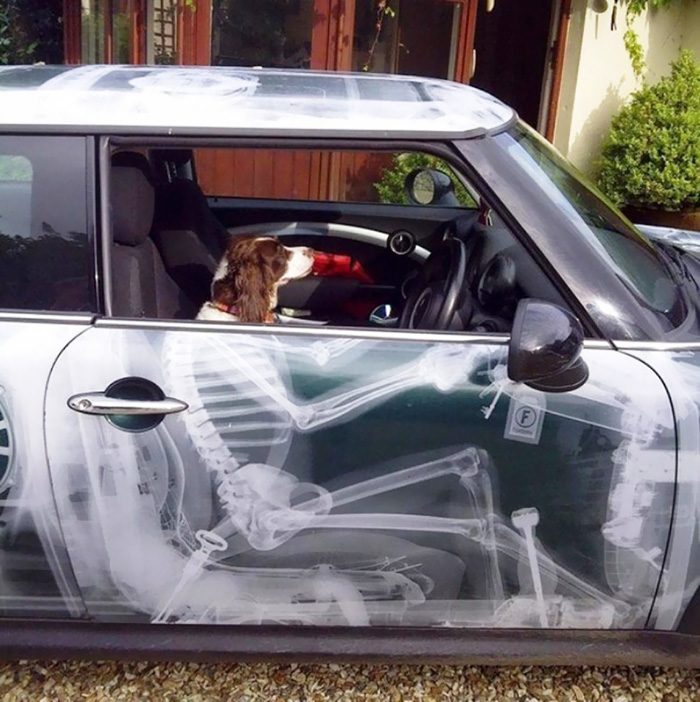 creative-car-owners-funny-tuning-15