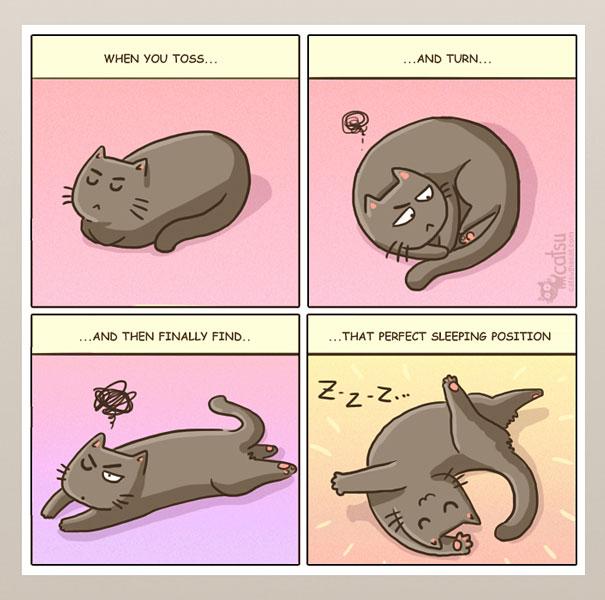 life-with-funny-cats-comics-catsu-12