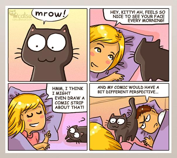 life-with-funny-cats-comics-catsu-14