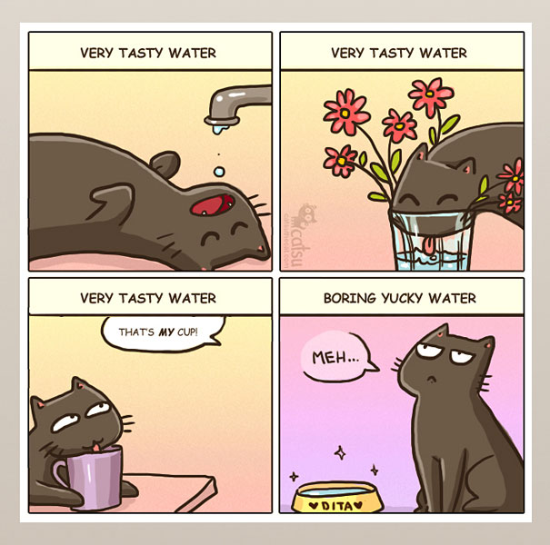 life-with-funny-cats-comics-catsu-15