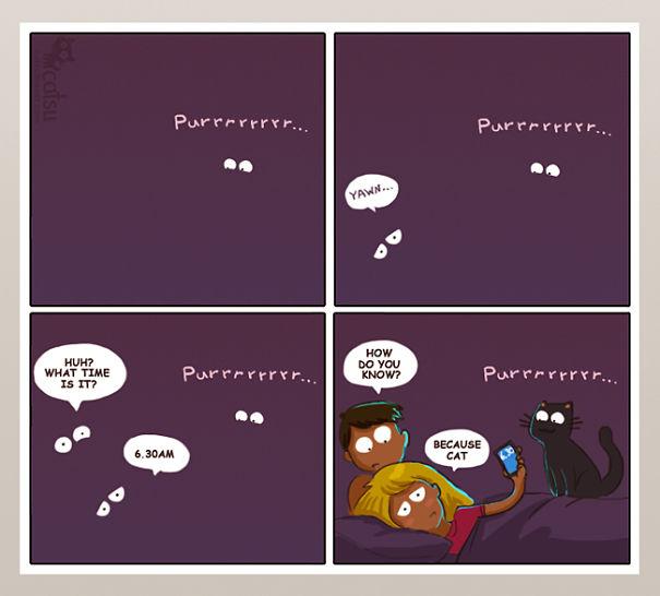 life-with-funny-cats-comics-catsu-3