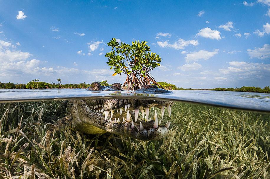winners-siena-international-travel-photo-awards-2016-55