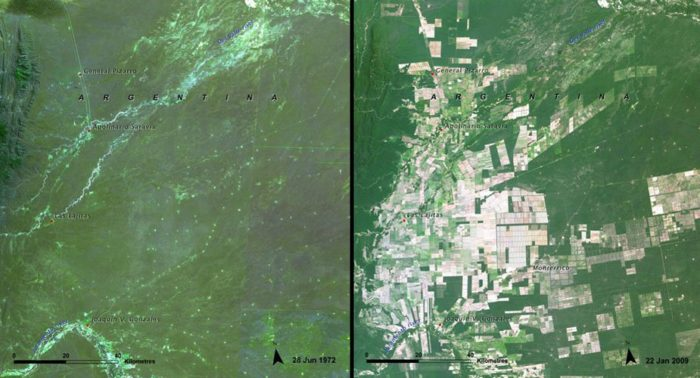 The rapid rate of deforestation in Argentina between 1972 and 2009