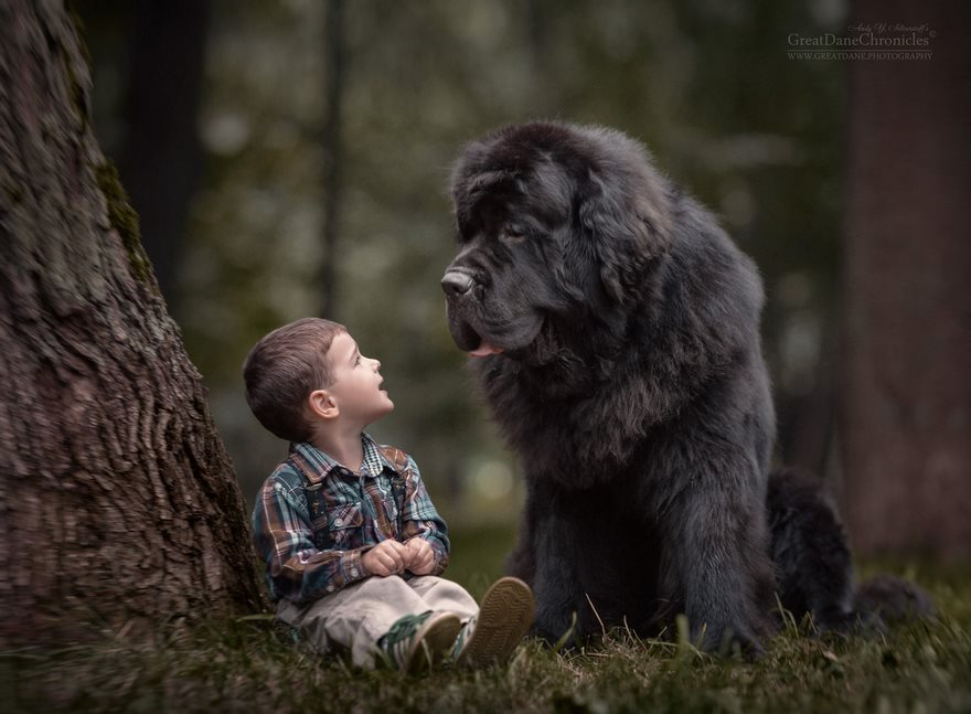 kids-play-big-dogs-photography-andy-seliverstoff-2