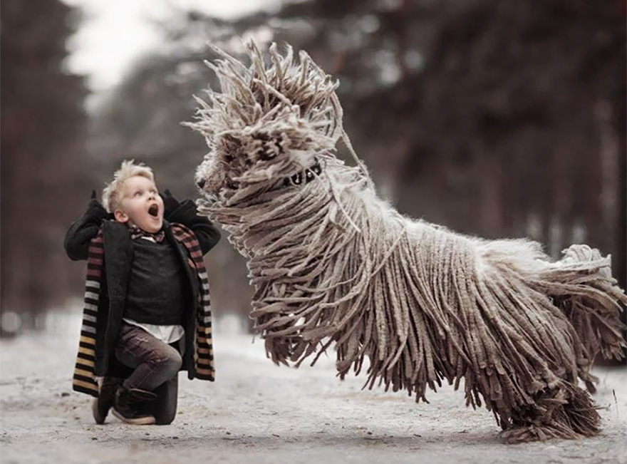 kids-play-big-dogs-photography-andy-seliverstoff-5